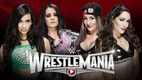 AJ Lee et Paige vs The Bella Twins