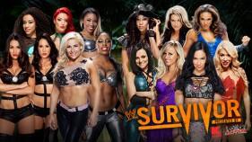 Natalya, The Bellas, The Funkadactyls, JoJo et Eva Marie vs AJ Lee, Tamina Snuka, Kaitlyn, Rosa, Summer Rae, Aksana et Alicia Fox