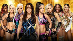 Women's Money in the Bank Ladder Match